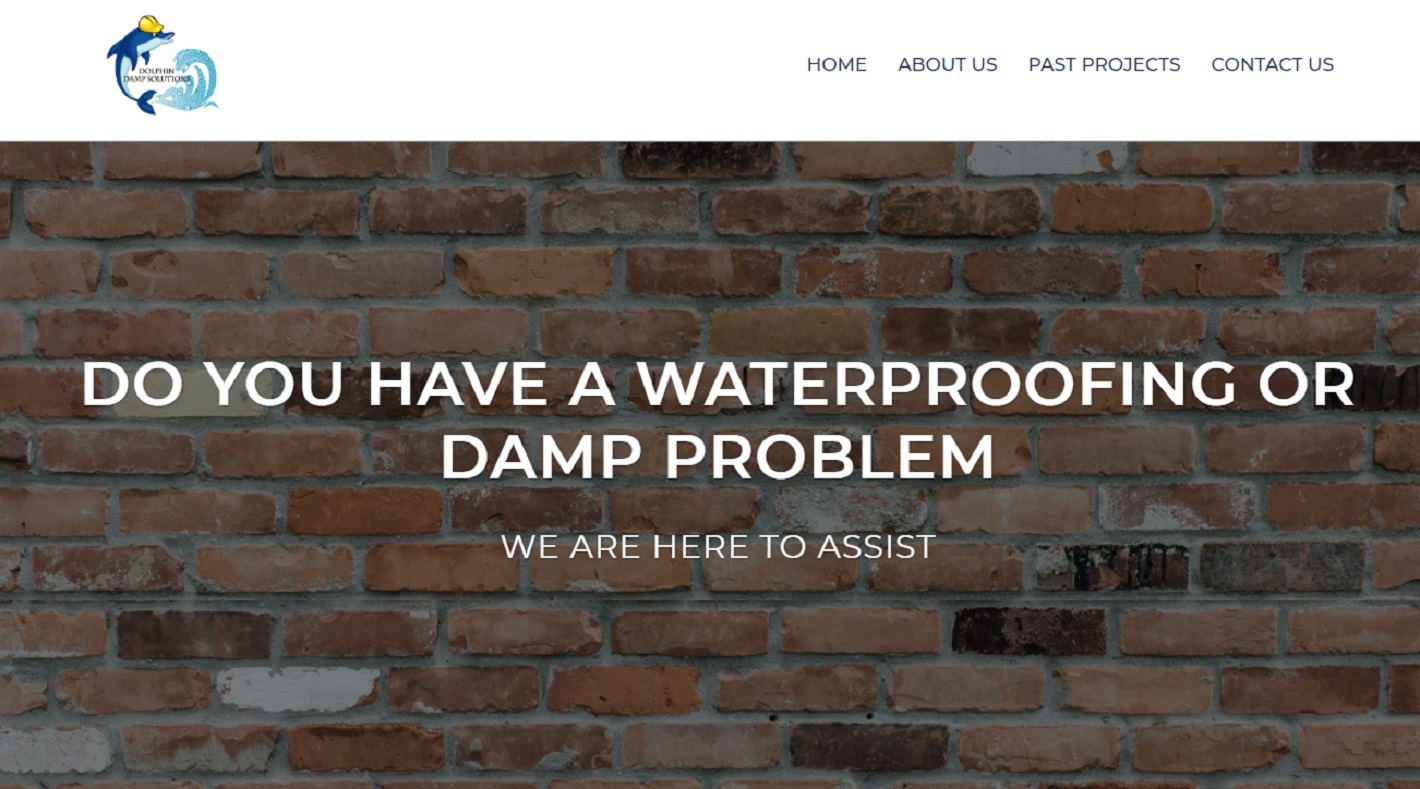 Dolphin Damp Solutions