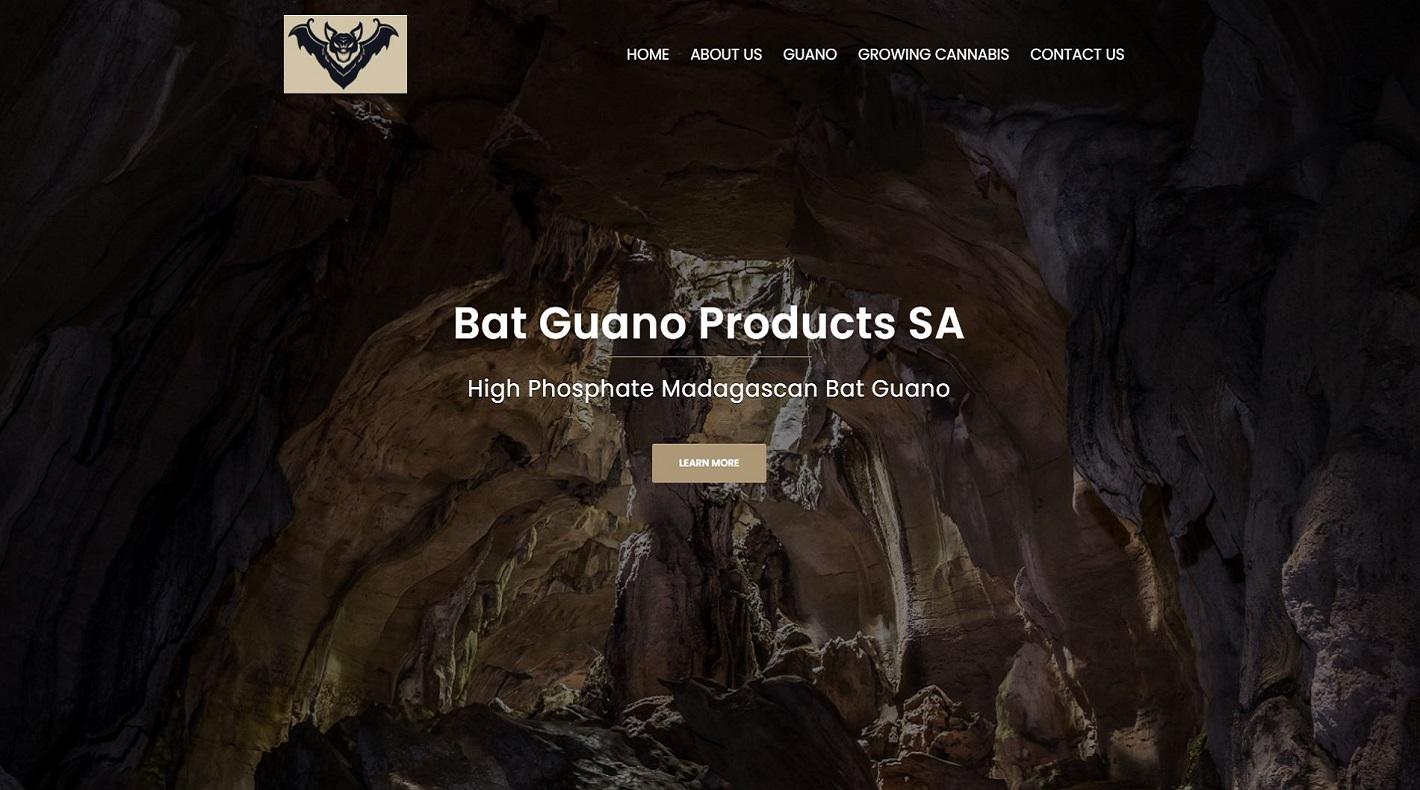Website Design Companies in Durban
